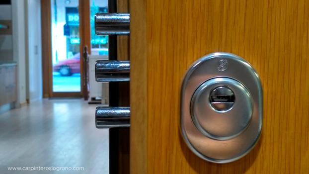 Puertas de seguridad en Logroño